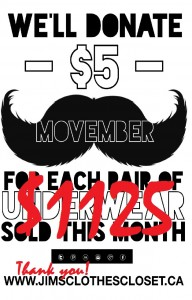 MOVEMBER DONATE blog